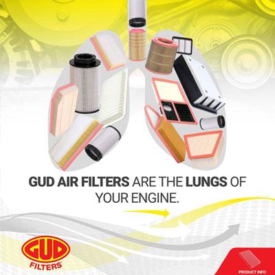 diesel-electric-gud-air-filter-lungs