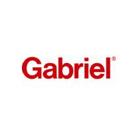 Gabriel Shock Absorbers